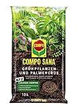 COMPO SANA Grünpflanzen- und Palmenerde mit 8 Wochen...